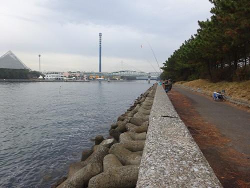 八景島 対岸 釣果